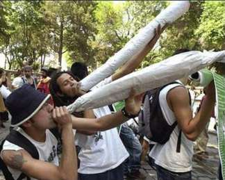 Giant joints in mexican marijuana protest